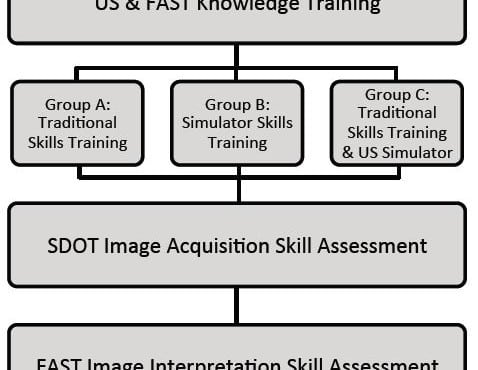 Disaster Response Team FAST Skills Training with a Portable Ultrasound Simulator Compared to Traditional Training: Pilot Study