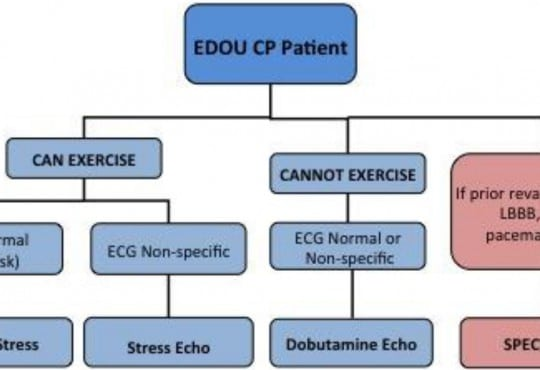 Reduction in Radiation Exposure through a Stress Test Algorithm in an Emergency Department Observation Unit