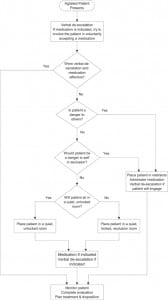 Figure. Recommended seclusion and restraint algorithm.